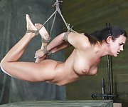 Stripped, roped, suspended hogtied