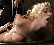 Brutally bound, face fucked, hogtied and made to cum
