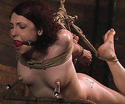 Roped, suspended, clamped and dildoed