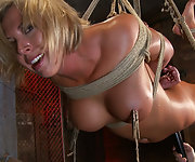 Busty blonde bound to the unforgiving bamboo shafts