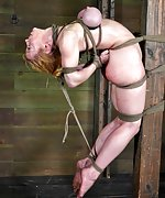 Roped, suspended, hogtied, tortured with water
