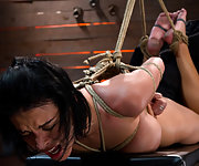 Busty brunette roped, hogtied, hanged and fingered